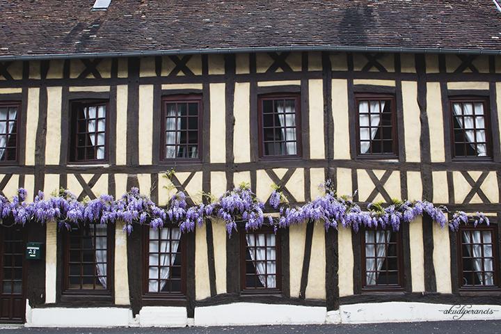 Lyons-la-foret-rumah-bunga