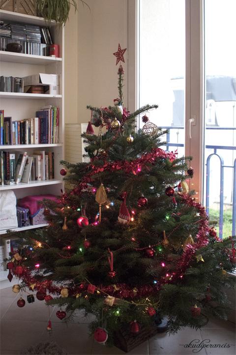 Persiapan Natal Dengan Pohon Asli