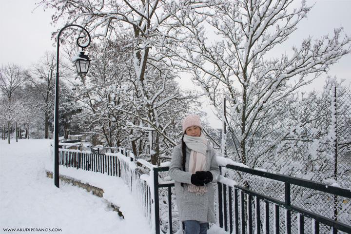 Turunnya Badai Salju Di Paris dan Sekitarnya-parc