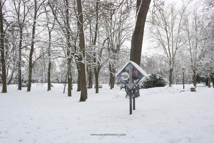 Turunnya Badai Salju Di Paris dan Sekitarnya-Kotak Buku Bacaan