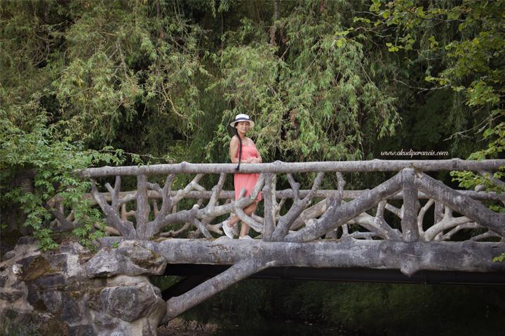 Le pont de l'Ermitage
