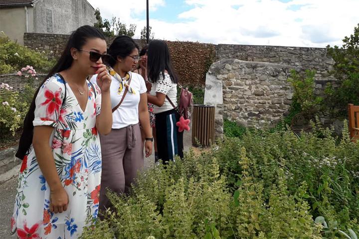 Kami menemukan salah satu taman yang ditanami berbagai macam tumbuhan